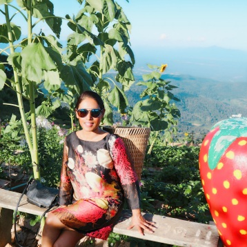 Strawberrie picking Mon Chaem (Mon Jam) Chiang Mai