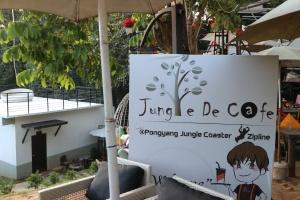Instafamous Chiang Mai waterfall Jungle De Cafe