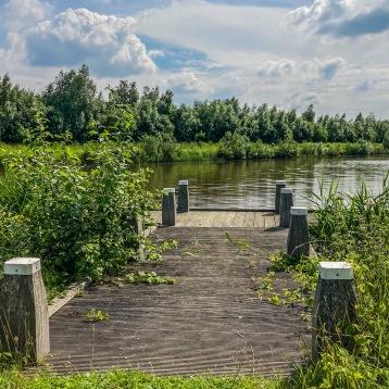 Groene Knoop Zeeuws-Vlaanderen